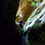 Newnes: Pipeline, Devils Pinch and Firefly Canyons