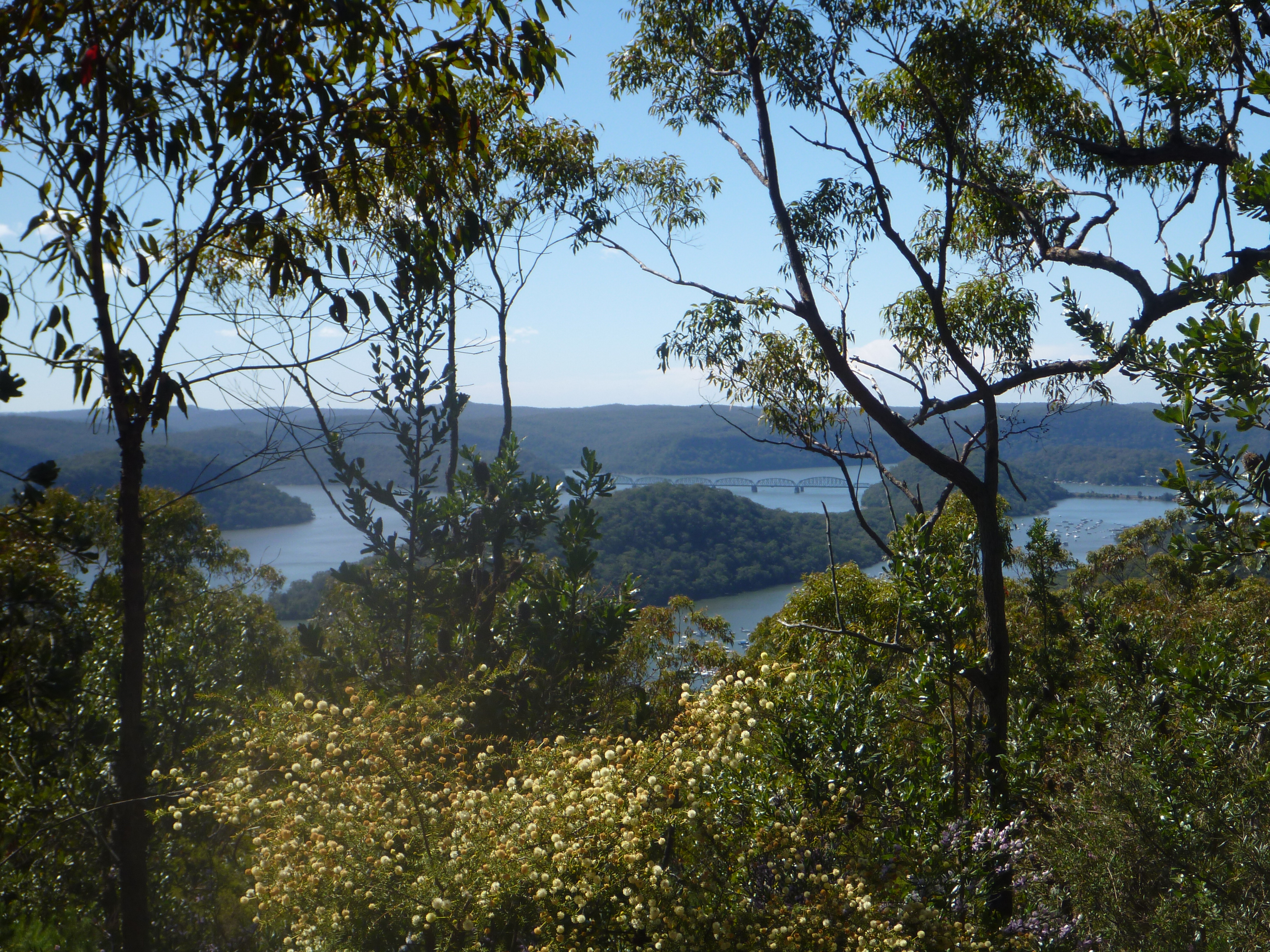 The view of the Hawkesbury from the tops