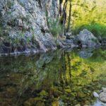 Wilderness at risk from plan to raise Warragamba Dam
